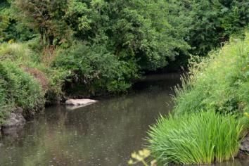 Environment Agency issues pollution warning
